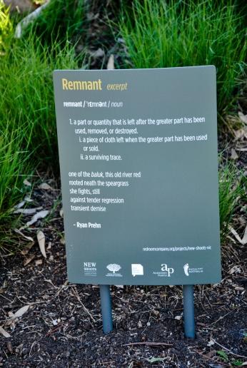 An excerpt of 'Remnant' by poet Ryan Prehn