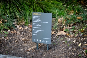 Excerpt from 'Grounds' by poet Bonny Cassidy in the Royal Botanic Gardens Victoria